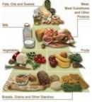 Makanan yang dapat menurunkan berat badan