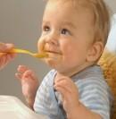 Manfaat Hati Sapi untuk makanan bayi