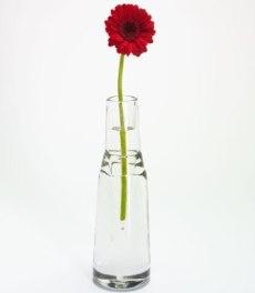 Gambar Vas Bunga Minimalis