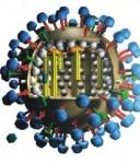 Macam Virus Hewan