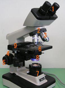 mikroskop cahaya dan bagian bagiannya