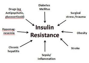 mekanisme resistensi insulin