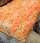 gambar jamur oncom