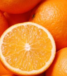 klasifikasi jeruk sunkist